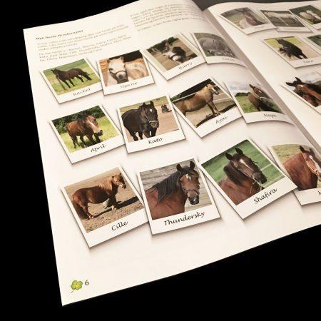nyt hesteliv medlemsblad opslag